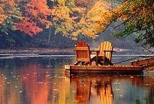 Autumn / My favorite season / by Juanita