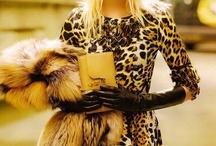 leopard / by Kaylin Fitzpatrick