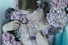 i do believe in fairies, i do, i do.  / by Rachel Zierke
