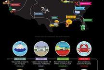 Infographics / by Mirela Terce
