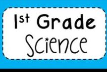 1st grade Science / All things 1st grade Science- plants, animals, geography, seasons, weather