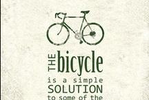 Stephen's board of cycling  / by Carolyn Hall