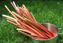 Vegetable | Rhubarb / All sorts of information and delicious rhubarb recipes to enjoy all summer long. Don't let the sweet recipes fool you, Rhubarb is actually a vegetable!