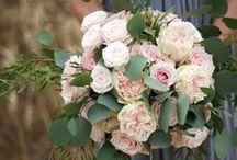 Bouquets / Wedding Flowers