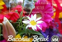 Mother's Day / Because she deserves it! <3  Gifts, Ideas and LOVE! by #bacchusbreak