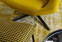 The Sun Ray / The fresh Yellow in the interiors