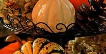 Party | Fall Harvest / Celebrate the changing of the leaves!