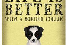 Dog way! / Ιδέες και λύσεις για την σωστή διατροφή και διαβίωση των αδέσποτων κ δεσποζόμενων ζώων!