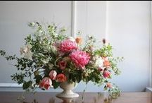 BLOOMS / My favourite flowers and floral arrangements.