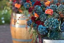 Wedding | Fall / Fall & Autumn Wedding Ideas, Decorations, Favors, Centerpieces, Invitations, Food, Drink and Inspiration