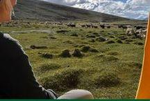 Randonnées autour du monde / Randonnées et marches à pied à découvrir en voyage autour du monde - récits, photographies, carnets pratiques et inspiration voyageuse