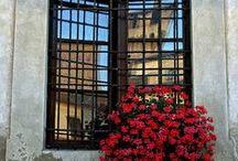 balcony/windowbox