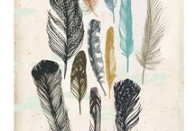 Wings and feathers