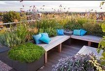 Dachgärten & kleine Stadtgärten / Kleine grüne Oasen in der Stadt!