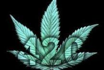 enjoy  / 420