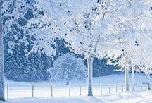 I love winter / by Ana Rebeca