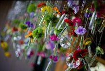 Wedding Centerpieces / #flowers #setdesign #weddingdeco