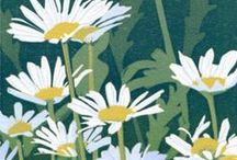 Original relief prints by Sherrie York / Intimate and intricate linocuts and woodcuts of nature and wildlife.
