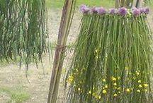 DIY & Insp. - Straw & Grass