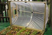 Vegetable garden / Hobby gardening + DIY ideas