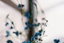 f l o w e r s / ganz viele Blumen. // all kind of flowers.