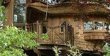 WEIRD houses but cute love the tree houses