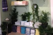 ecru powderroom  / towels, bathmats, baskets, makeup trays, cosmetic bags, laundry bags