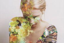 bloom / botanical images