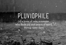 Rain / Anyone who thinks that sunshine is pure happiness, has never danced in the rain...