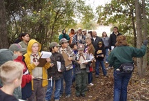 Scouts / River Legacy currently offers Cub Scout badge programs.  We will be offering Junior and Brownie Girl Scout badge programs beginning in Spring 2013.  Call 817-860-6752 for more information or visit riverlegacy.org.