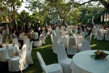 My work... wedding Planner! / Wedding planner