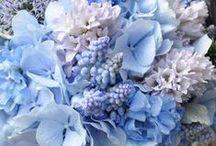 Ślub i wesele w kolorze nieba