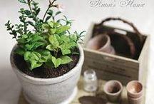 Fleurs Plantations & Jardinage / Miniatures pour maisons de poupées au 1/12ème