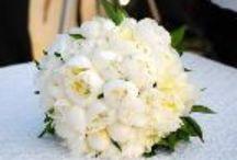 Anthotopos Flowershop