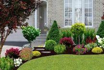 Frendly Garden