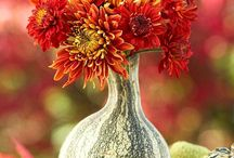 Flower Autumn/Winter Arranging
