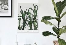 8 : PLANTPARTY