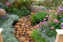Secret garden / ideas for outside