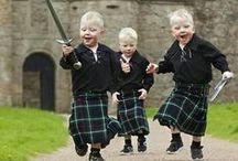 Highland / by MacKenzie-Childs