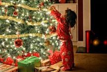 Most Wonderful Time of The Year / by Layne Weichselbaum