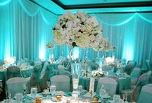 Birthday Party: Turquoise Quince