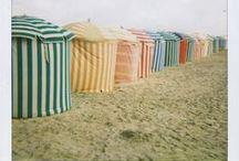 Seashore / by MacKenzie-Childs