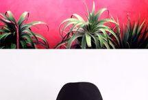Tropical Vibe