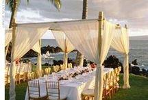 Seaside weddings / A collection of beautiful ideas for seaside weddings - perfect for a wedding in Devon.