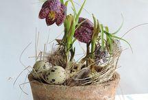Easter - Pääsiäinen