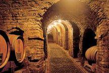 Ars Vinum - Wine Cellar