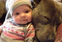 Aww-Dorable / Dogs, babies and general cuteness