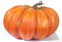Herbstdeko / Dekoartikel zum Thema Herbst von decorado