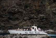 Napali Coast Sea Caves / We charter to the beautiful and mysterious Kauai se acaves off the coast of Napali.