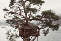 çok tarz (ağaç evler )